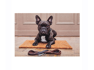 textiles-linen/carpets/french-bull-dog-motif-dust-control-door-mat-40-x-60cm