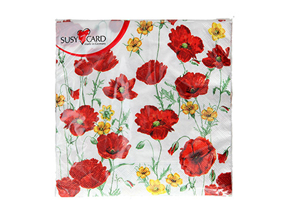 dinnerware/party-items/poppy-design-napkins